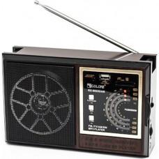 Портативный радиоприемник GOLON RX 9922 Черный (300738)