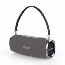 Портативная Bluetooth колонка Hopestar A6 с влагозащитой Серая (jv-46)
