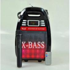 Колонка комбик Golon RX-810 BT Bluetooth mp3 радиомикрофон пульт цветомузыка Черный (258673)