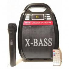 Бумбокс-караоке Bluetooth Golon RX-810BT (200657)