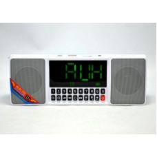 Портативная Bluetooth колонка WS-1515BT