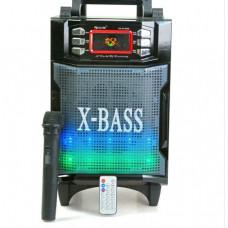 Колонка GOLON RX-2900BT 2000W Комбик Bluetooth MP3 FM Радиомикрофон пульт Черный (258672)